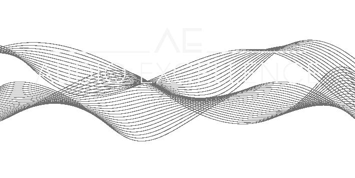 AE Logo auf schwarz_Zeichenfläche 1