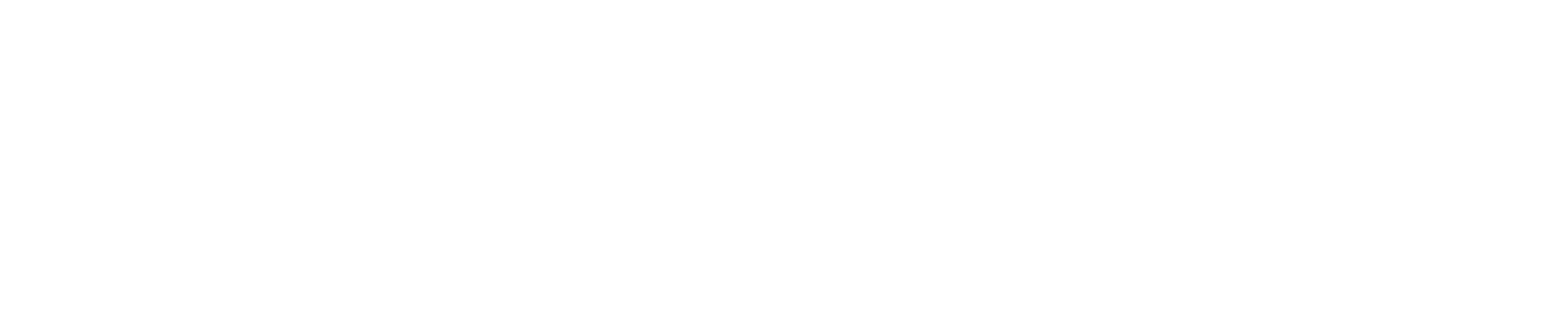 PIEGA Logo weiss